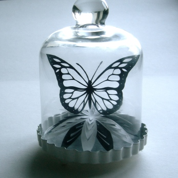 Butterfly and flower in bell jar